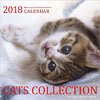 cats collection 2018